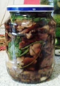 Как солить грибы опята