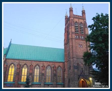 концерт органной музыки в соборе