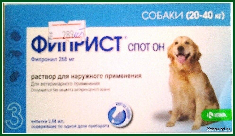 защита от клещей для собак 4