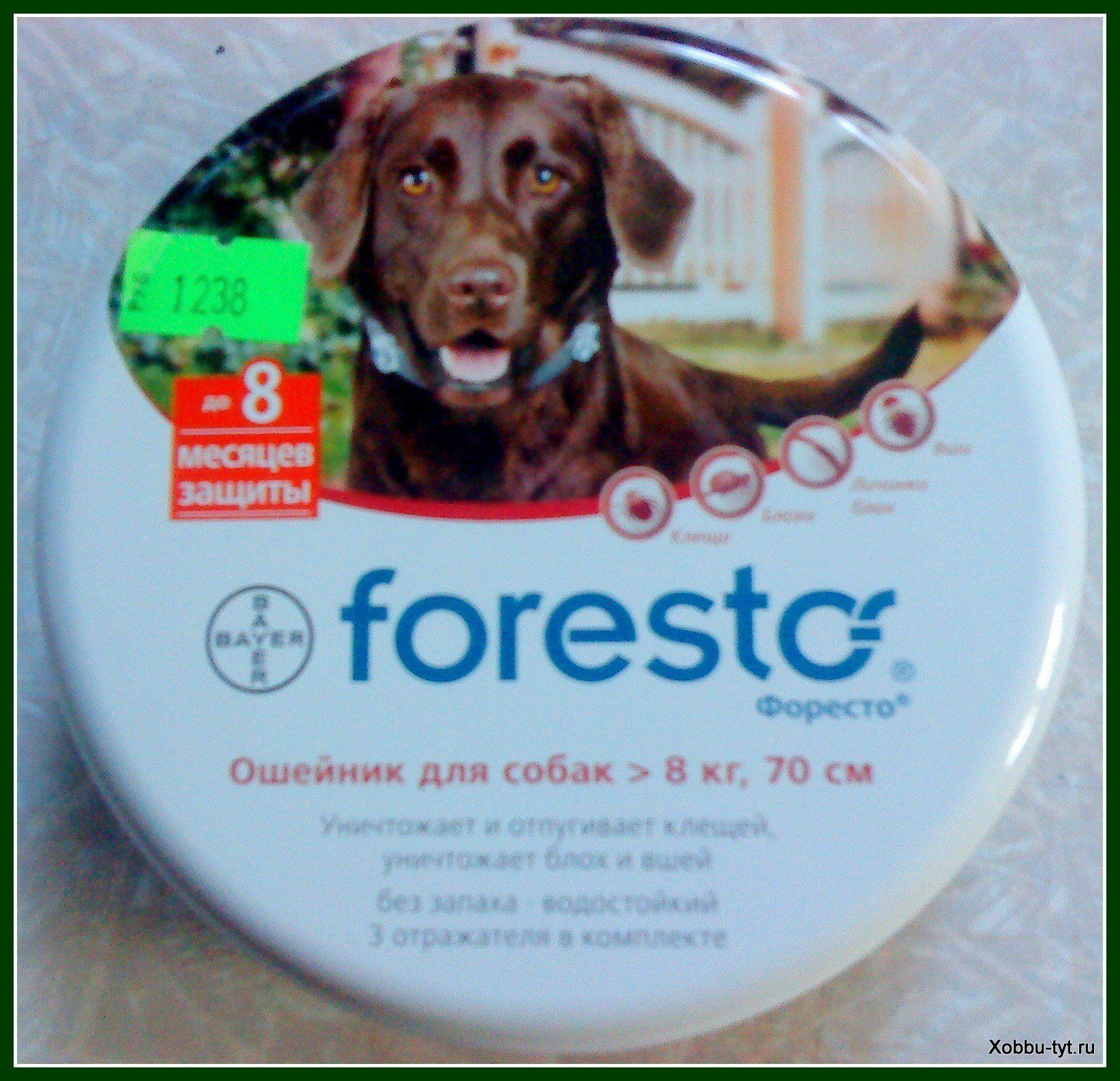 защита от клещей для собак 6