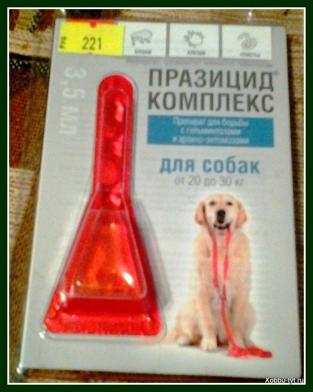 защита от клещей для собак 7
