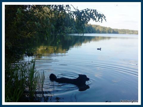 фото рек озер