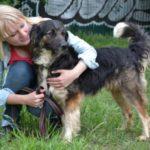 взять собаку из приюта в москве бесплатно 31