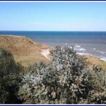 отдых на азовском море летом отзыв 4