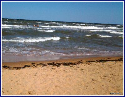 отдых на азовском море летом отзыв