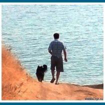 отдых на море с собакой 12